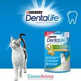 10 000 échantillons Dentalife® à tester avec votre chat