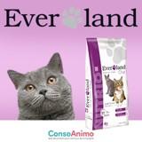 Testez les croquettes NUTRIO avec votre chat