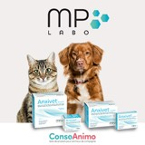 Testez Anxivet pour chiens et chats !