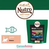 Testez les croquettes Nutro Wild Frontier au saumon et poissons blancs avec votre chaton