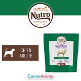 Testez les croquettes NUTRO™ GRAIN FREE pour chien adulte à l'agneau