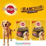 Testez les friandises Pedigree® Ranchos™ avec votre chien