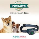Testez le collier anti-aboiement à jet PetSafe avec votre chien