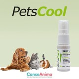 Testez PetsCool Spray avec votre animal