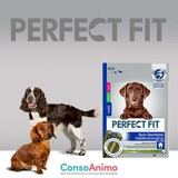 Testez PERFECT FIT™ Soin des articulations avec votre chien