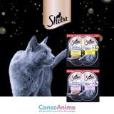 Testez Sheba® Perfect Portions™ avec votre chat !