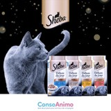 Testez les SHEBA® Délices du Jour avec votre chat !