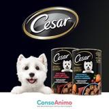 Testez les Boîtes CESAR® NATURAL GOODNESS™ Multi-variétés