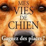 Concours : avez-vous gagné vos places pour le film «Mes vies de Chien» ?