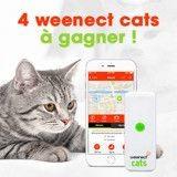 Découvrez et tentez de gagner un collier GPS Weenect pour votre chat !