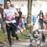 Wamiz Run 2020 : Assur O'Poil, un expert qui soutient les Chiens Guides Paris !