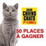 Concours Salon Chiens Chats : avez-vous gagné l'une des 50 places mises en jeu pour l'édition 2017 ?