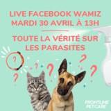 Toute la vérité sur les parasites externes : venez poser vos questions à un vétérinaire pendant notre live !