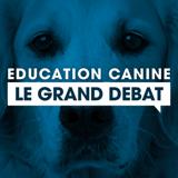 Quelle méthode d'éducation choisir pour son chien? Le débat de Wamiz