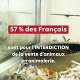 Voici les 11 sources de souffrance animale qui révoltent le plus les Français