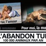 Animaux abandonnés : Brigitte Bardot lance une campagne choc
