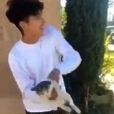 Un ado se filme en train de lancer un chat dans les airs (Vidéo)