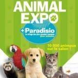 Animal Expo : une édition placée sous le signe du cinéma