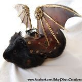 Elle transforme votre cochon d'Inde en dragon !