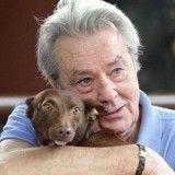 Mambo, chien brûlé vif 7 ans plus tôt, porte-étendard de la maltraitance animale