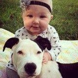 Non vous ne rêvez pas, le meilleur ami de cette petite fille est bien un adorable Pitbull !