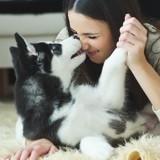 16 preuves que le chien est le meilleur ami de l'Homme