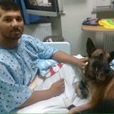 Tous deux blessés, un soldat et son chien soignés dans le même hôpital