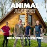 Animal Academy : TF1 vole au secours des maîtres dépassés par leurs animaux !