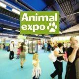 Animal Expo, l'effervescence animalière à l'état pur