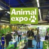 Animal Expo : on y est !