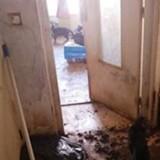 Appartement de l'horreur : ils entendent des cris, ouvrent la porte et sont pris de violentes nausées