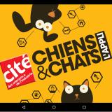 Avec l'appli Chiens & Chats, aidez les scientifiques à mieux connaître nos animaux !