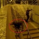 Panique dans le métro : une prétendue araignée géante affole la ville !
