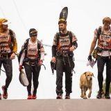L'incroyable voyage d'Arthur, un chien errant devenu le co-équipier d'une équipe d'athlètes