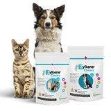 Testez les bouchées Zylkene Chews pour votre chien ou chat !