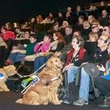 30 chiens d'assistance au cinéma : une séance inédite adaptée par Wamiz et Royal Canin !