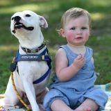 Ce bébé et son chien sont handicapés, leur relation est unique