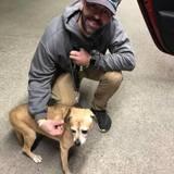 Il n'hésite pas à faire 2500 kilomètres pour réunir une femme en fin de vie et son chien une dernière fois