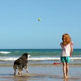 Jouer à « va chercher » avec votre chien