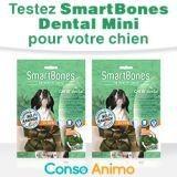 Testez gratuitement les friandises pour chien SmartBones Chew+ Dental Mini !