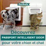 Testez gratuitement la chatière Passport Intelligent Door de PetSafe !
