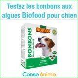 Testez gratuitement les bonbons aux algues pour chien Biofood !