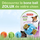 Testez gratuitement le jouet pour chien Bone Ball de Zolux !