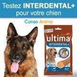 Testez gratuitement les sticks pour chien INTERDENTAL+ de Ultima !