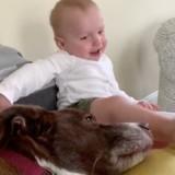 La maman regarde son bébé et son chien sur le lit : en 1 seconde, tout dérape ! (Vidéo)