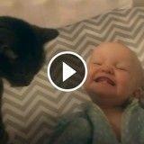 Ce bébé devient totalement FOU quand il voit son chat