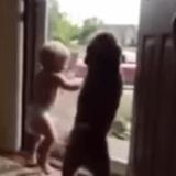 Ce bébé et son chien ont la même réaction en retrouvant leur papa… (Vidéo du jour)