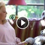 « La Belle Histoire », le programme court sur les animaux des stars, revient sur M6 !