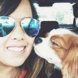 La ville de Dallas se mobilise pour aider le chien de l'aide-soignante victime d'Ebola