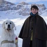 Belle & Sébastien 3 : 30 chiens guides réunis au cinéma pour promouvoir l'accessibilité !